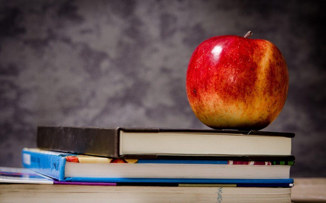 Utbildning vs Coaching – Fördomar och lärdomar ifrån fältet